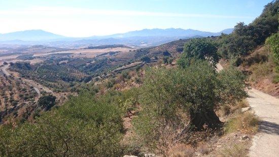 Casarabonela, Spanien: Bergweg direct achter La Pura