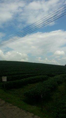 Mae Chan, Tailandia: 1474647609323_large.jpg