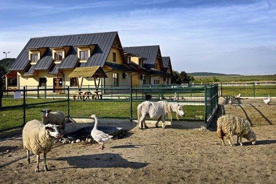 Pezinok, Slovacchia: Mini ZOO