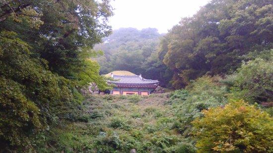 Gyeongju, كوريا الجنوبية: 山の斜面あります