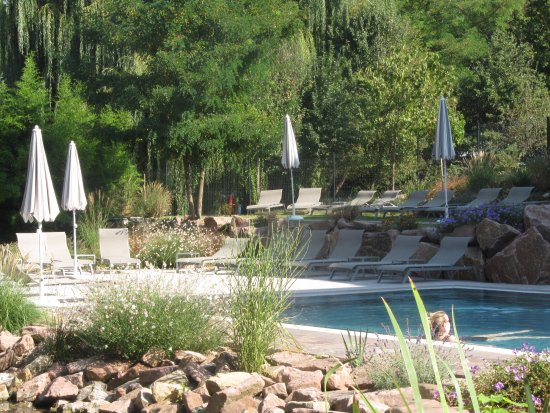 Reflets des fleurs dans la piscine billede af hotel spa for Piscine ensisheim
