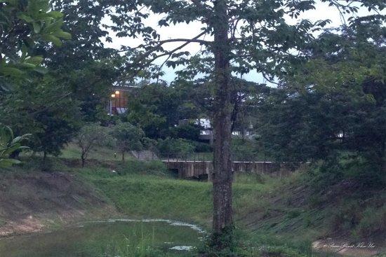 The Piano Resort: อีกมุมจากระเบียงมองขึ้นไปยังพื้นที่ส่วนร่วมไกลคะ สระน้ำก็ตื้น