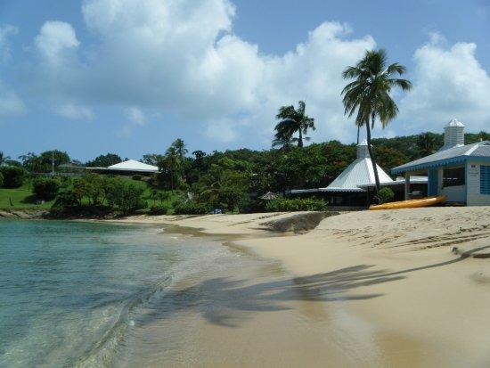 Hawksbill by Rex Resorts: Main beach
