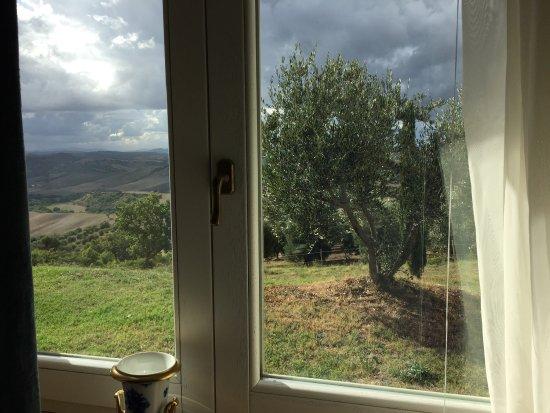 Cinigiano, Italia: photo5.jpg