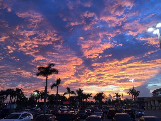 Hallandale Beach, FL: photo0.jpg