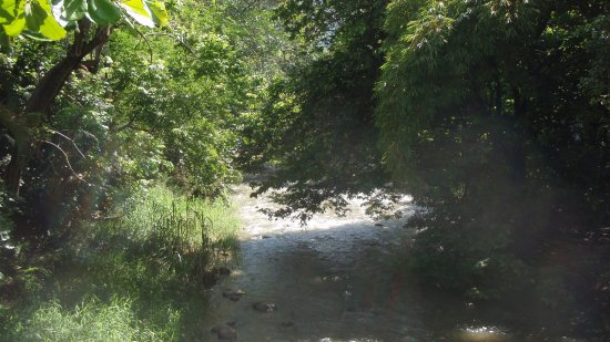 La Fuente Del Puente: The river on the side of the restaurant