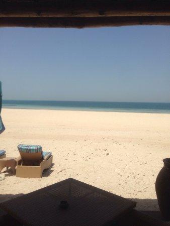 Sir Bani Yas Island, De Forenede Arabiske Emirater: photo1.jpg