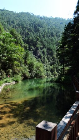 Lishui, Cina: Sunny day and green vegetation
