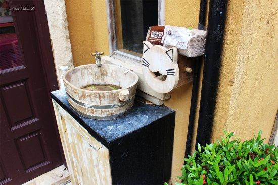 Пак-Чонг, Таиланд: ช้อปแมว
