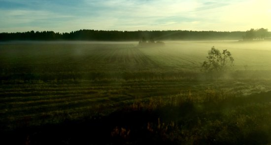 Southern Finland, Finland: Travelling through Leteensuo, Finland.