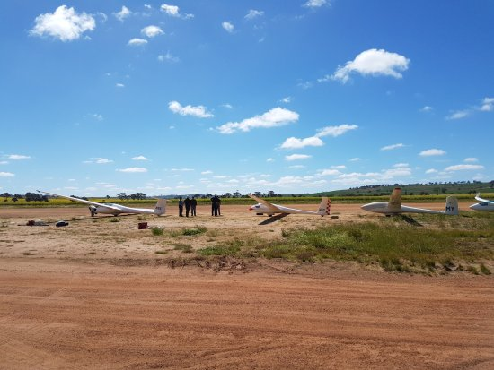Beverley, Australia: Club gliders ready to go!