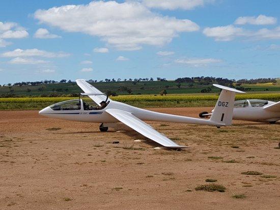 Beverley, Australia: DG1000