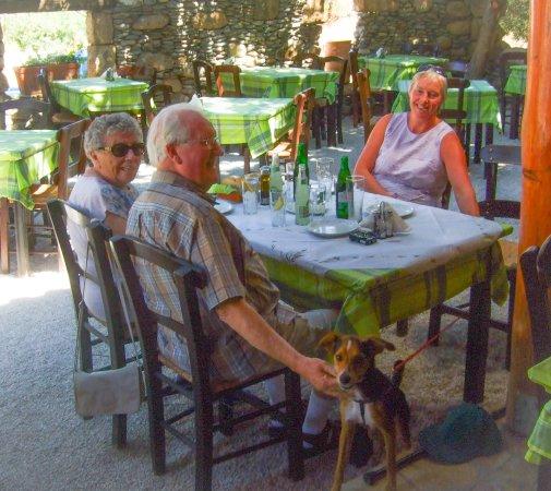 Sougia, กรีซ: Courtyard