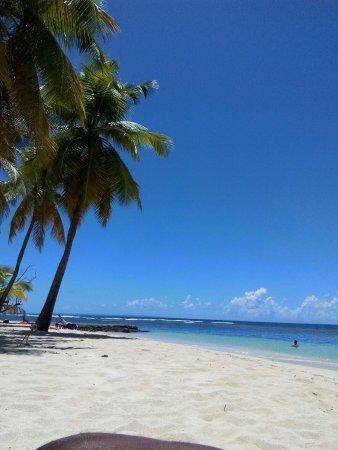 Sainte-Anne, Guadeloupe: IMG_20160907_113848_large.jpg