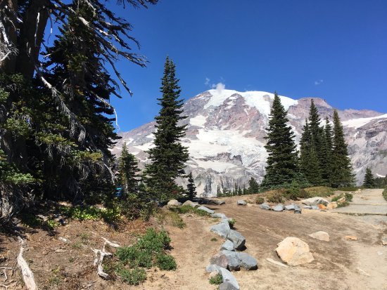 Mount Rainier: Top of Path