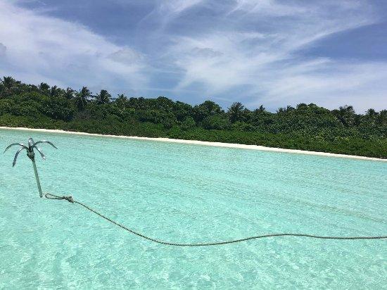 Haa Alif Atoll: IMG-20160922-WA0005_large.jpg