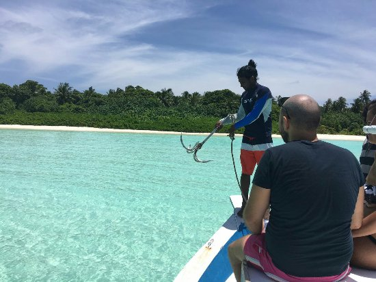 Haa Alif Atoll: IMG-20160922-WA0003_large.jpg