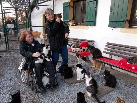 Deggendorf, Γερμανία: Das war mein Besuch in der Katzenvilla 😊😊😊