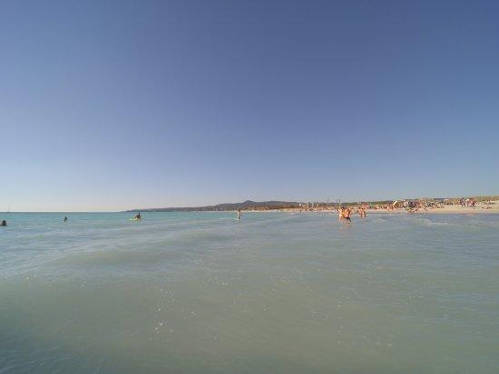 Rosignano Marittimo, Italia: Spiagge Bianche