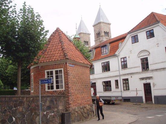 Viborg, Danimarka: Rektors lysthus i Latinerhaven. Domkirken .
