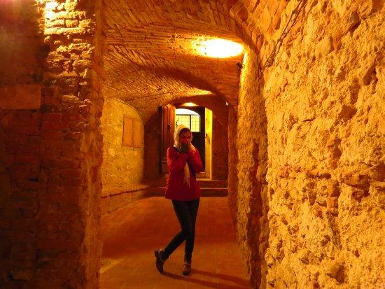 Montepulciano, อิตาลี: Interior de uma adega!