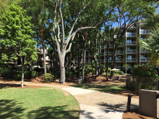 Landscape - Picture of Omni Hilton Head Oceanfront Resort - Tripadvisor