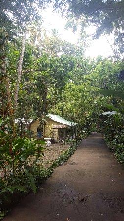 Diamond Botanical Gardens: 20160912_105003_large.jpg