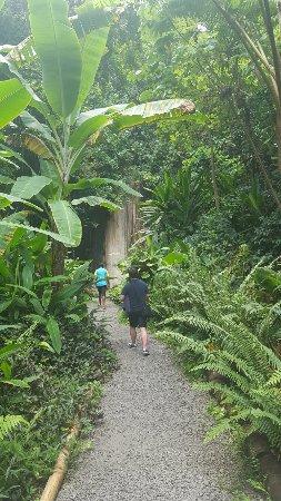 Diamond Botanical Gardens: 20160912_110733_large.jpg