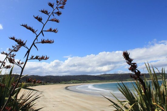 Waikawa, Nouvelle-Zélande : photo4.jpg