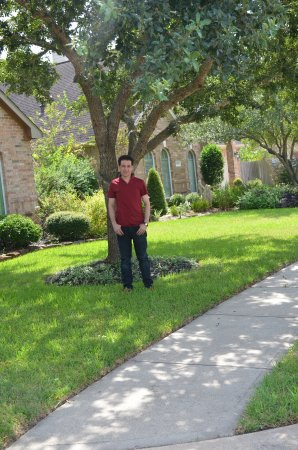 Pearland, TX: Under Tree ;)