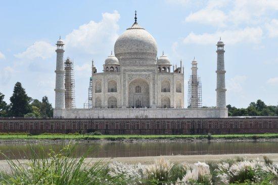 Fabulous view of the Taj Mahal from Mehtab Bagh