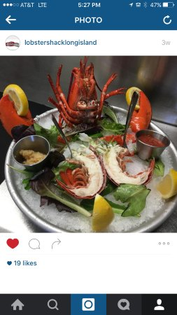 Seaford, NY: lobster cocktail