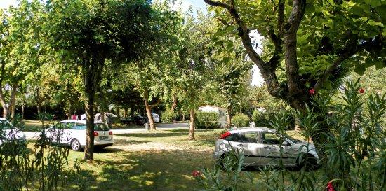 Malcontenta, Italia: Camping