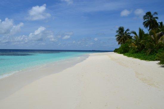 Den nordlige Ari-atollen: Pristine coral beach