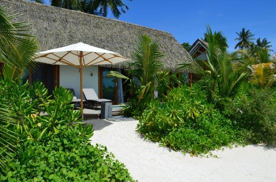 Den nordlige Ari-atollen: Beautiful garden leading onto beach