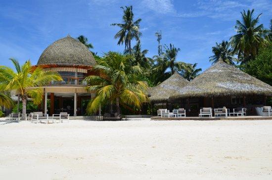 Den nordlige Ari-atollen: Olive Restaurant and bar by the beach