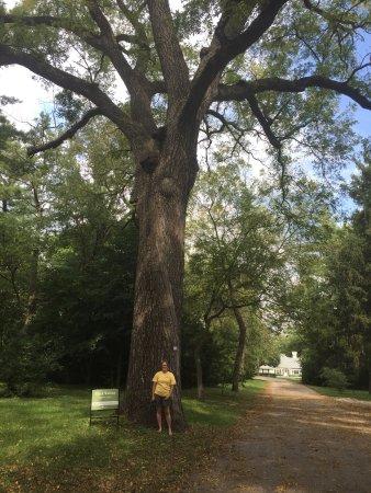Arbor Lodge State Historical Park : photo1.jpg