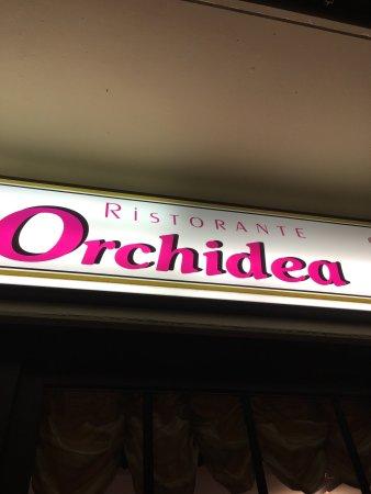 Dettingen an der Erms, Deutschland: Ristorante Pizzeria Orchidea
