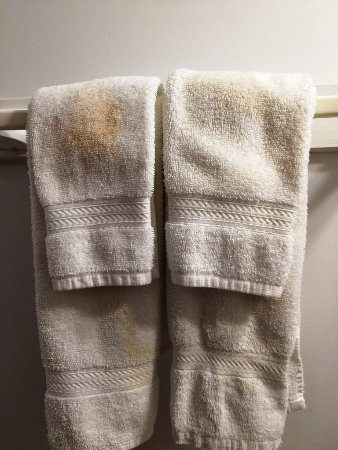 Stowehof Inn & Resort: How does one not see the stains when setting up a room! Would you dry your face/hands with these