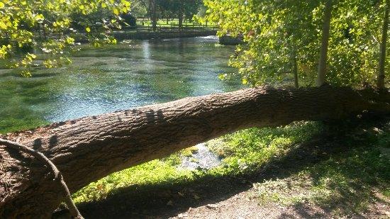 San Salvatore Telesino, อิตาลี: Parco grassano