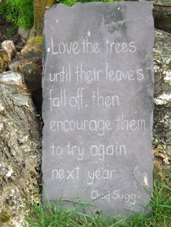 Longniddry, UK: Quote in the grounds