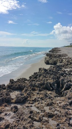 Hobe Sound, FL: 20160923_105422_large.jpg