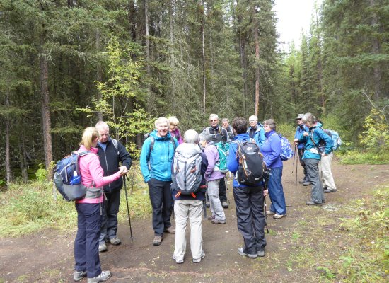 Canadian Rockies Alpine Hiking Day Tours: Dave's the one in pale blue, just left of centre