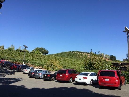 Glen Ellen, Californien: photo2.jpg