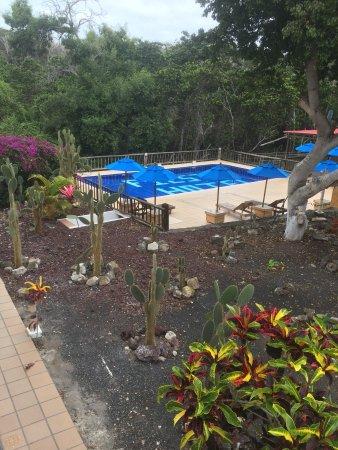 Hotel Fiesta: Het zwembad