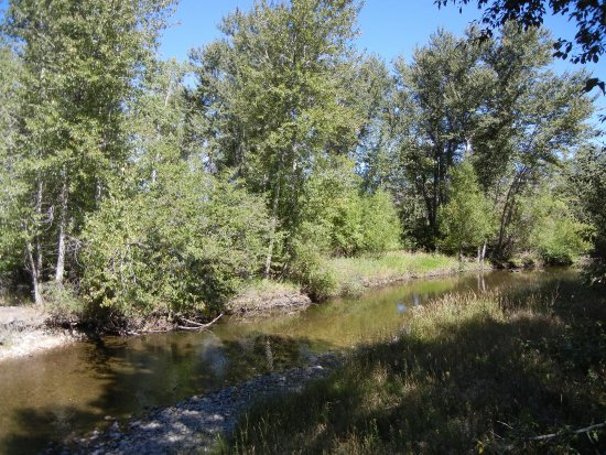Lolo, Монтана: Travelers' Rest State Park, Bitterroot River, MT