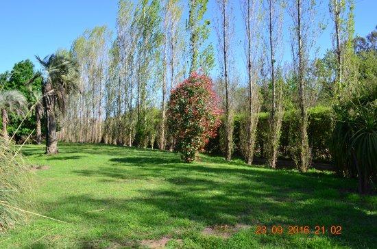 Gualeguay, Argentina: Muchísimo verde