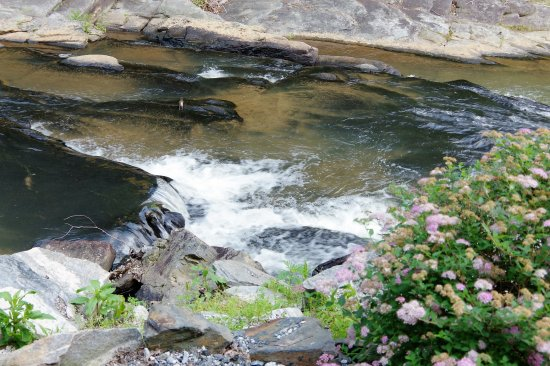 Toccoa Falls: CLOSE UP OF THE STREAM