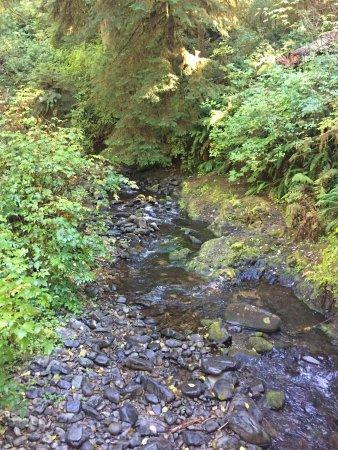 Oregon Coast, ออริกอน: photo1.jpg