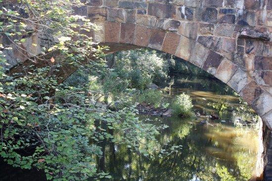 Morrilton, AR: bridge by picnic shelters